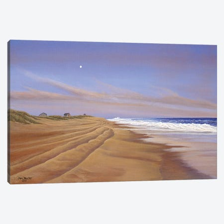 Moonlite Seranade Canvas Print #TMI29} by Tom Mielko Art Print
