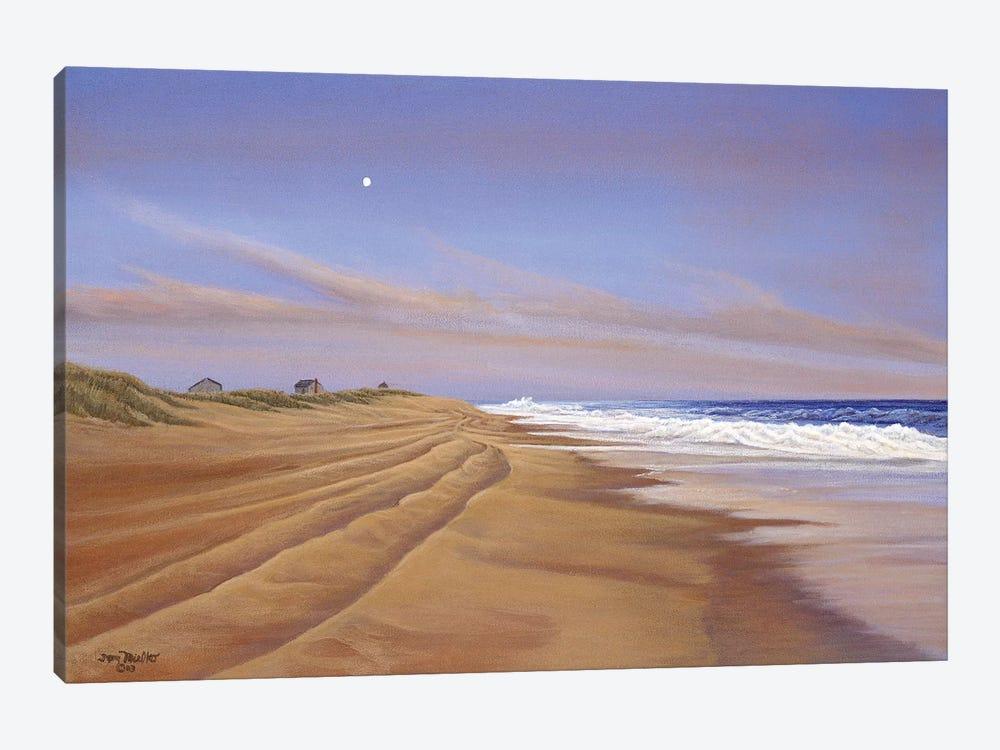 Moonlite Seranade by Tom Mielko 1-piece Canvas Artwork