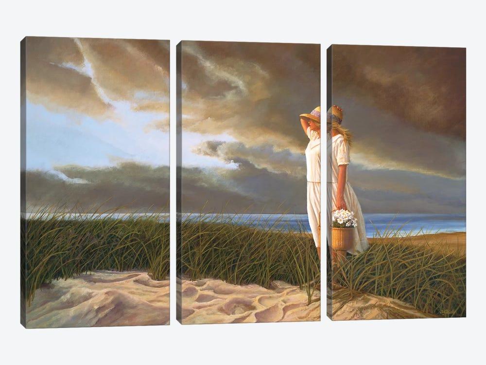 After the Rain by Tom Mielko 3-piece Canvas Art Print