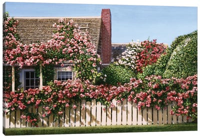 Nantucket Roses by Tom Mielko Canvas Art Print