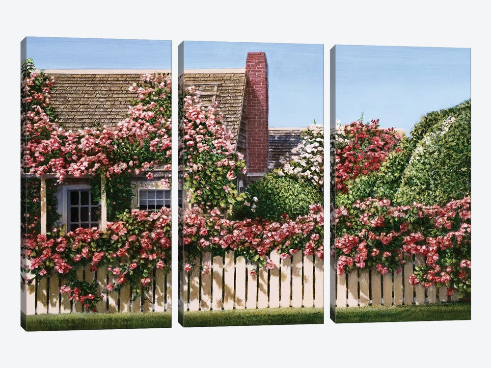 Nantucket Roses by Tom Mielko 3-piece Canvas Art Print