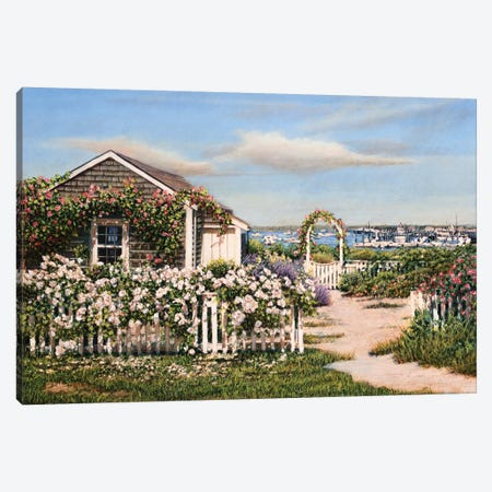 Summer Petals Canvas Print #TMI47} by Tom Mielko Canvas Art