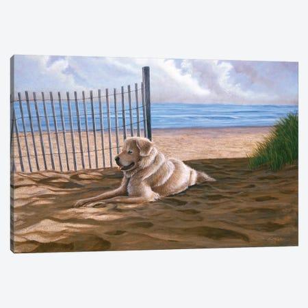 Willie Moe Canvas Print #TMI56} by Tom Mielko Art Print