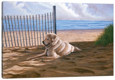 Willie Moe Canvas Art Print