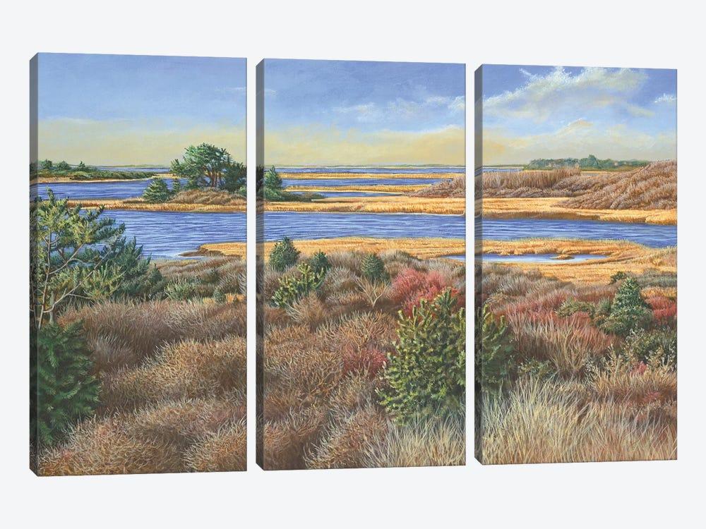 Autumn View by Tom Mielko 3-piece Canvas Art