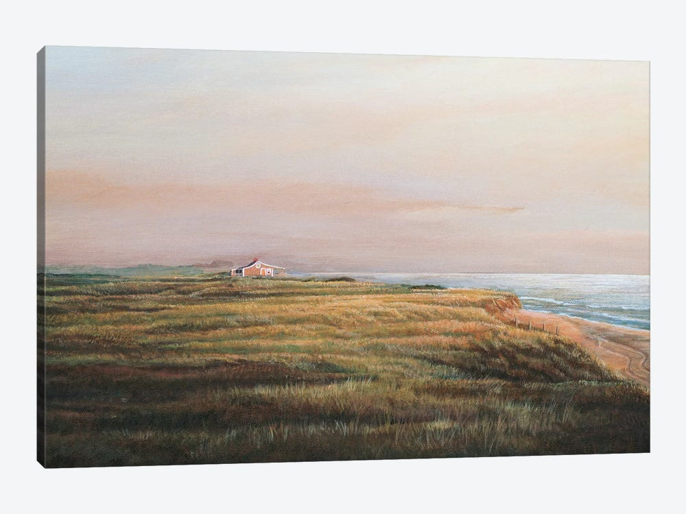 Cisco Sunrise by Tom Mielko 1-piece Canvas Artwork
