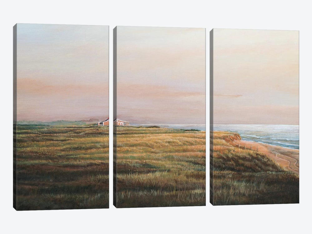 Cisco Sunrise by Tom Mielko 3-piece Canvas Artwork