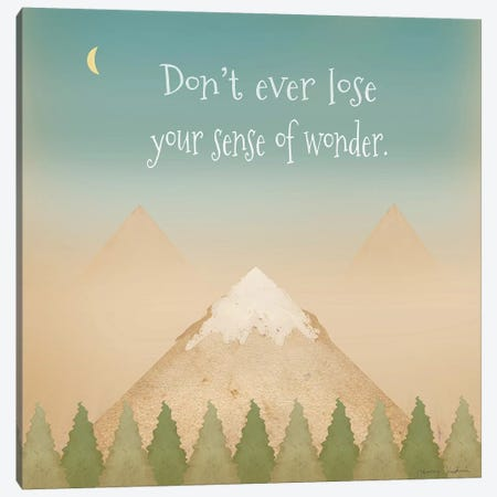 Sense Of Wonder II Canvas Print #TMK63} by Tammy Kushnir Canvas Print