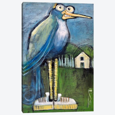 Bird In Found Shoes Canvas Print #TNG209} by Tim Nyberg Canvas Artwork