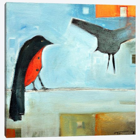 Birds Know 5 Canvas Print #TNG215} by Tim Nyberg Canvas Art