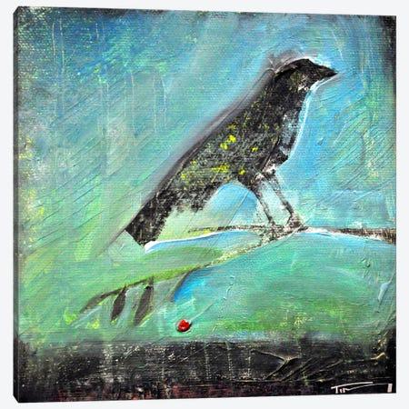 Blackbird Red Berry Canvas Print #TNG218} by Tim Nyberg Canvas Art Print