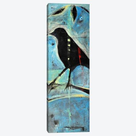 Blackbird On Branch Canvas Print #TNG219} by Tim Nyberg Canvas Art Print
