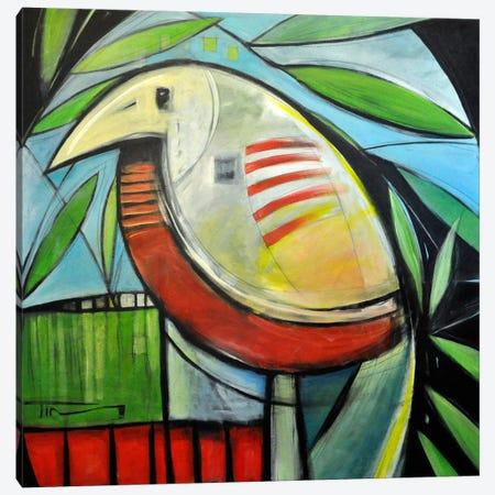 Fancy Bird Canvas Print #TNG232} by Tim Nyberg Canvas Art Print
