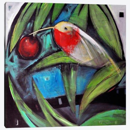 Humming Bird And Cherry Canvas Print #TNG245} by Tim Nyberg Art Print