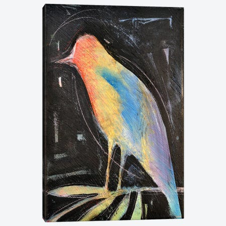 Rainbow Bird Canvas Print #TNG259} by Tim Nyberg Canvas Print