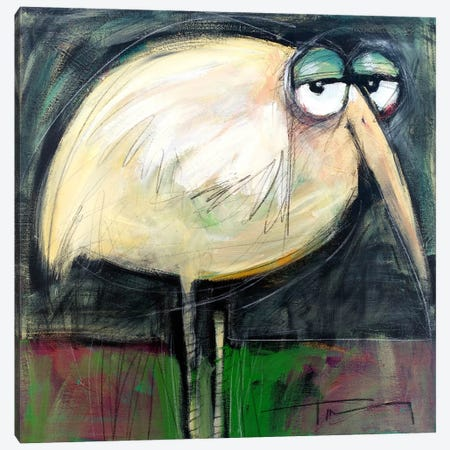 Rotund Bird Canvas Print #TNG266} by Tim Nyberg Canvas Print