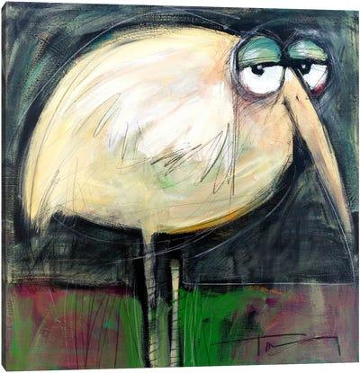 Rotund Bird Canvas Art Print