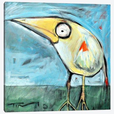 Snipe Canvas Print #TNG267} by Tim Nyberg Canvas Art Print