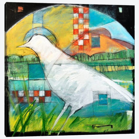 White Bird In Marsh Canvas Print #TNG275} by Tim Nyberg Canvas Artwork