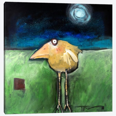 Yellow Bird In Moonlight Canvas Print #TNG279} by Tim Nyberg Canvas Print