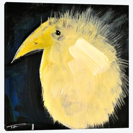 Yellow Fuzzy Bird Canvas Print #TNG281} by Tim Nyberg Canvas Wall Art