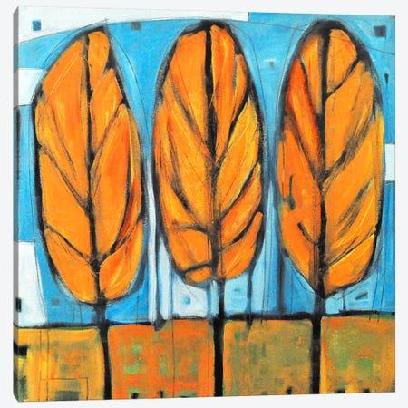 Fall Trees Canvas Print #TNG334} by Tim Nyberg Canvas Art Print