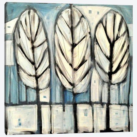 Winter Trees Canvas Print #TNG335} by Tim Nyberg Art Print