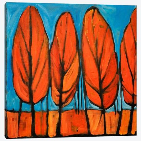 Autumn Dance Canvas Print #TNG339} by Tim Nyberg Canvas Art