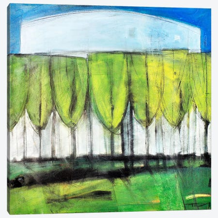 Wineglass Trees Canvas Print #TNG356} by Tim Nyberg Canvas Art Print