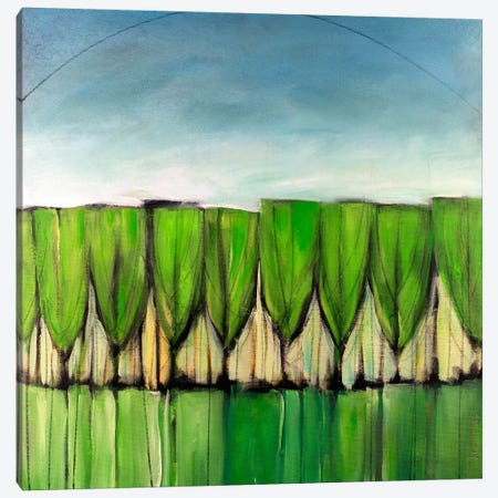 Wineglass Trees After Rain Canvas Print #TNG357} by Tim Nyberg Canvas Art Print