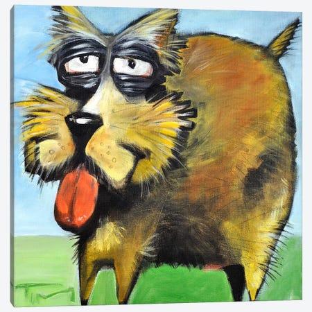Murphy Stout Dog Canvas Print #TNG83} by Tim Nyberg Art Print