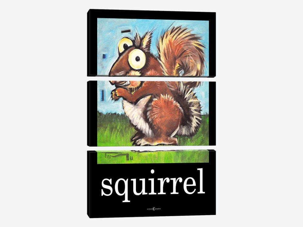 Squirrel Poster by Tim Nyberg 3-piece Canvas Art