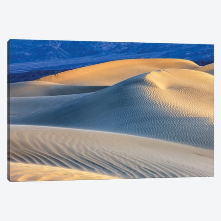 Mesquite Sand Dunes. Death Valley, California I Canvas Print #TNO10} by Tom Norring Canvas Wall Art