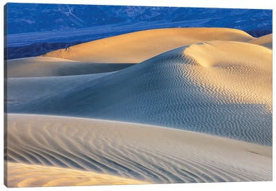 Mesquite Sand Dunes. Death Valley, California I Canvas Art Print