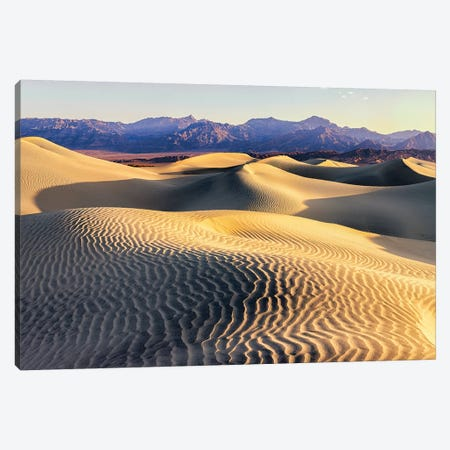 Mesquite Sand Dunes. Death Valley. California II Canvas Print #TNO11} by Tom Norring Canvas Art