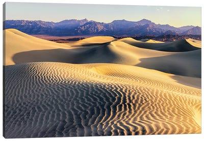 Mesquite Sand Dunes. Death Valley. California II Canvas Art Print