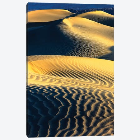 Mesquite Sand Dunes. Death Valley. California III Canvas Print #TNO12} by Tom Norring Canvas Artwork