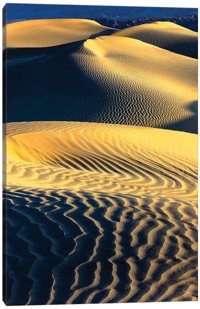 Mesquite Sand Dunes. Death Valley. California III Canvas Art Print