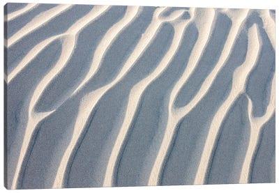 Sandy Waves. Mesquite Sand Dunes. Death Valley, California. Canvas Art Print