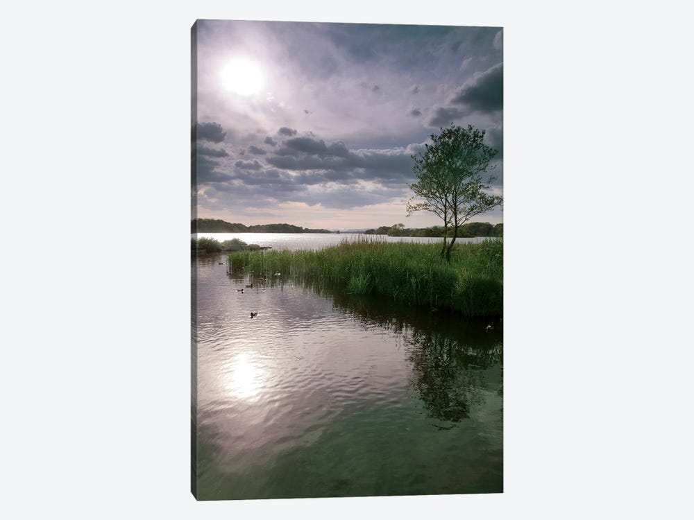 County Kerry. Killarney National Park. Ireland. Sunset Over Lake. Unesco Biosphere Reserve. by Tom Norring 1-piece Canvas Print