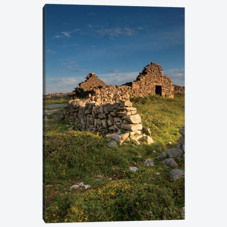 Inishmore Island. Aran Islands. Ireland. Abandoned Homestead. Canvas Print #TNO25} by Tom Norring Canvas Artwork