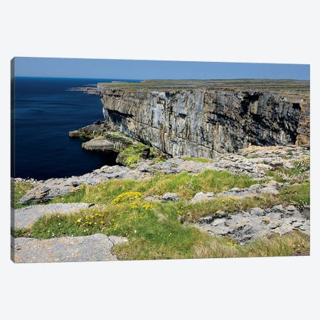 Inishmore Island. Aran Islands. Ireland. Limestone Sea Cliffs. Atlantic Coast. Flowers On Rocks Canvas Print #TNO27} by Tom Norring Canvas Art