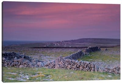 Inishmore Island. Aran Islands. Ireland. Limestone Sea Cliffs. Atlantic Coast. Karst Formations And Rock Walls. Sunset. Canvas Art Print