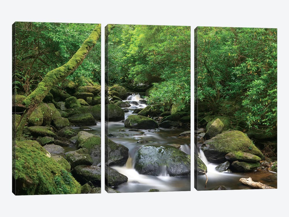 Killarney National Park, County Kerry, Ireland. Torc Waterfall. by Tom Norring 3-piece Canvas Art