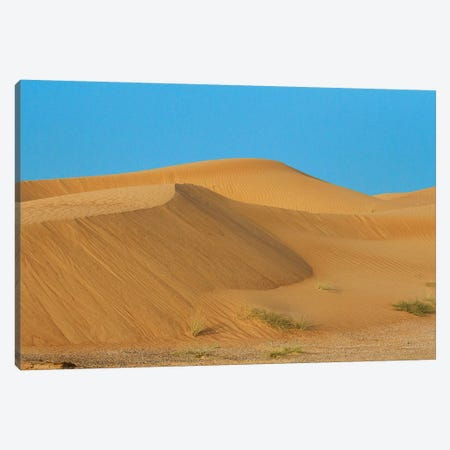 Desert with sand. Abu Dhabi, United Arab Emirates. Canvas Print #TNO39} by Tom Norring Canvas Wall Art