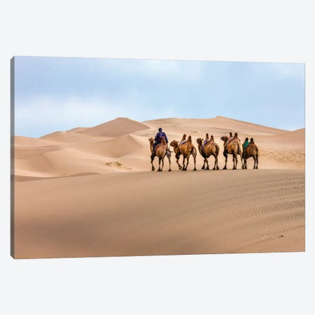 Camel Caravan in the Dunes. Gobi Desert. Mongolia. Canvas Print #TNO7} by Tom Norring Canvas Print
