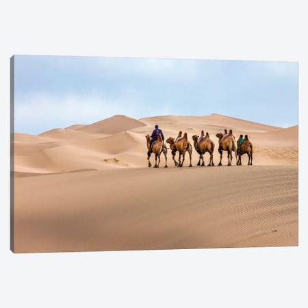 Camel Caravan in the Dunes. Gobi Desert. Mongolia. Canvas Print #TNO7} by Tom Norring Canvas Print