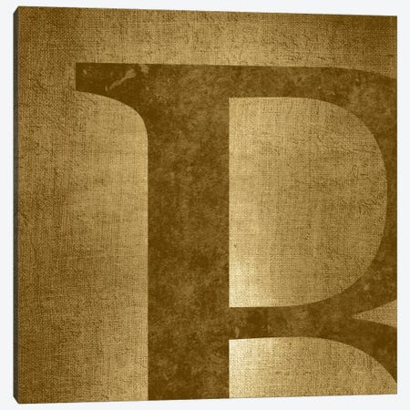 B-Gold Shimmer Canvas Print #TOA219} by 5by5collective Canvas Art Print