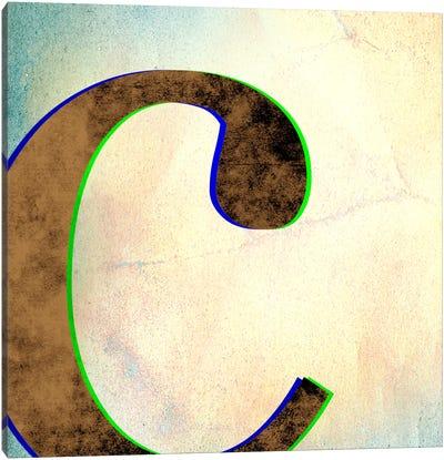 C-Insta Canvas Art Print