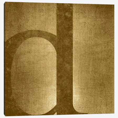 D-Gold Shimmer Canvas Print #TOA243} by 5by5collective Canvas Art